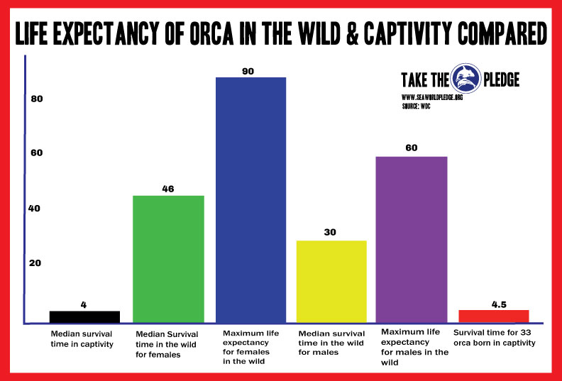 median life expectancy in captivity