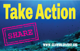 take-action-and-share