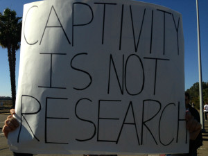 Orca Captivity is not Research