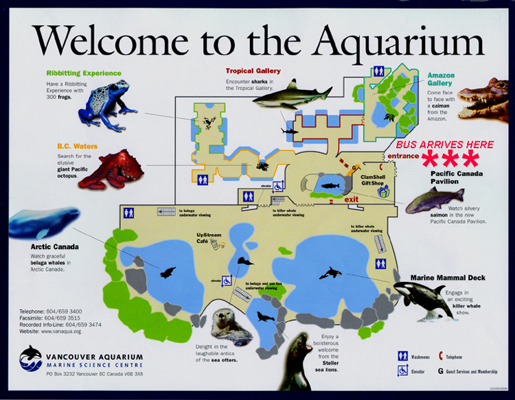 Vancouver aquarium map pictures to pin on pinterest Directions to aquarium
