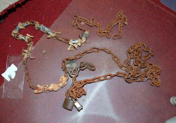 Chains Ariel Castro Used