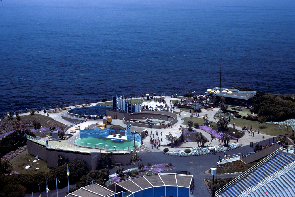 Marineland of the Pacific – June 1977. Photo Credit: Wikipedia