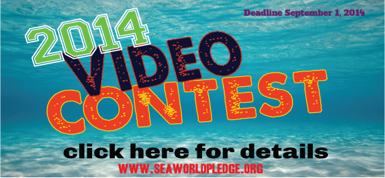 video-contest-seaworld-pledge-2014
