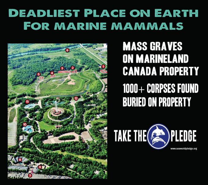 marineland canada mass graves