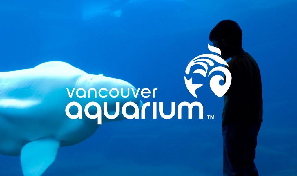 vancouver aquarium advocacy